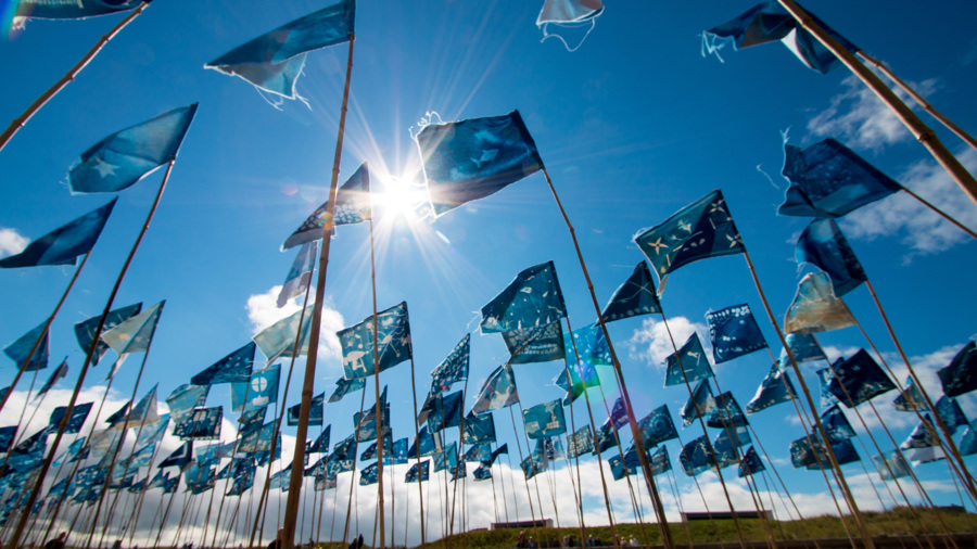 Blue Flag, Blyth BeachBlue Flag, Blyth Beach - photo by Jason Thompson, Sound Ideas