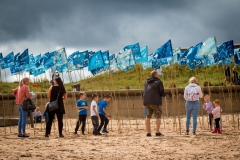 Blue Flag, Blyth BeachBlue Flag, Blyth Beach - photo by Jason Thompson, Sound Ideas
